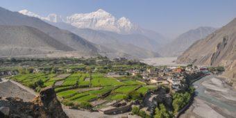 vallée verdoyante népal