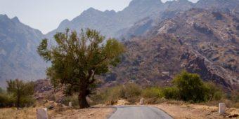 road rajasthan india