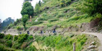 nature green india himalaya