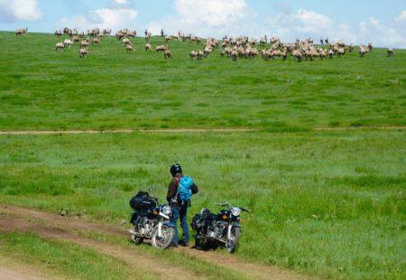 """<strong>La Mongolie est rarement une destination que l'on choisit pour un premier voyage avec Vintage, qu'est-ce qui t'a poussé à choisir ce pays ?</strong> En 2013, après un changement important dans ma vie, je suis parti au Pérou en solo. Un vrai déclic et surtout une envie de voyager différemment. Alors en 2014, je cherchais une destination lointaine, une autre culture à découvrir. Je tombe un jour, complètement par hasard sur une émission qui parle de ce pays et au passage d'une agence qui propose la découverte des steppes en moto. Comme un flash, une coïncidence incroyable, un signe du destin auquel je suis sensible. Je venais alors de passer mon permis moto 6 mois plus tôt.Le temps de retrouver le nom de l'agence, d'envoyer un mail, d'échanger avec Morgan et c'est parti comme ça. Vintage a bien voulu m'emmener alors que le groupe, à ces dates-là, n'avait pas d'autres inscrits! Je partais donc seul avec un guide inconnu sur des pistes inconnues, très loin, sans expérience du off road, mais avec une grosse envie de relever le défi. J'ai vu ce <a href=""""http://www.vintagerides.com/voyage-moto/mongolie/"""">voyage en moto en Mongolie</a> comme une évidence. Parfois, il faut pousser une porte pour découvrir un autre monde, se confronter à l'inconnu."""