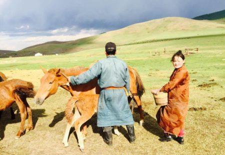 <strong>Un conseil pour ceux qui souhaitent voyager en Mongolie avec nous?</strong>  C'est la deuxième saison que je fais ici, et je constate deux idées reçues très ancrées dans l'esprit des gens qui arrivent dans ce pays pour la première fois. Heureusement après le voyage tout le monde tombe d'accord! - «Euh, la Mongolie je ne sais pas, j'ai l'impression que c'est monotone, ça va être toujours la même chose». Non, la Mongolie ce n'est pas que de la steppe, au contraire, les paysages sont très diversifiés. On trouve de tout: canyons, rivières, forêts, volcans, lacs, désert,montagnes… - «On mange mal en Mongolie, venir 15 jours pour manger du mouton et boire du lait de jument fermenté…» C'est faux. A Oulan-Bator on a une grande diversité dans la gastronomie, de nombreux restos et on trouve de tout dans les supermarchés. Et dès que l'on part dans la steppe, on dort dans des camps de yourtes qui ont fait de gros efforts depuis quelques années pour satisfaire le palais des voyageurs: jus de fruits, légumes, plats occidentaux… Même les végétariens passent leur voyage en Mongolie sans problème. Ce qui est vrai, c'est qu'il y a toujours beaucoup de vodka!