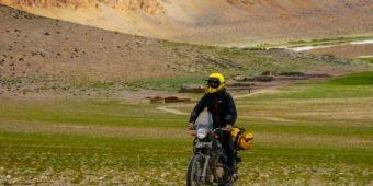 himalayan dans les steppes