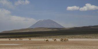paysage desertique au perou