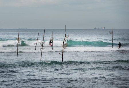 <h3>Les pieds dans l'eau</h3>  Envie de soleil et de détente? Vous aurez plusieurs occasions au cours du voyage pour barboter dans l'eau et vous relaxer sur de magnifiques plages de sable blanc. A Negombo, Trincomalee ou Polhena, plongez dans l'océan pour une pause bien méritée. Sur certaines étapes, vous pourrez vous rafraîchir dans les piscines de vos hôtels. Au début du voyage, à Negombo, vous pouvez embarquer quelques heures sur un catamaran traditionnel, un «oruwa» ou découvrir l'immense marché au poisson. Le lendemain à Kalpitiya, vous avez la possibilité de partir en bateau observer les dauphins et les baleines qui se donnent rendez-vous à l'aube pour un spectacle féerique. Quelques jours plus tard sur la côte Est, partez pour une session de snorkeling sur Pigeon Island. Cette petite île, au large de la magnifique plage de Nilaveli, est une réserve naturelle aux fonds marins magiques. Nagez au milieu des tortues, des poissons multicolores par centaine et des petits requins pointes noires, inoffensifs.